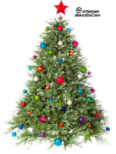 Christmas Tree PNG Transparent Image PNG Clip art
