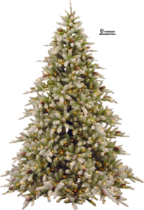Christmas Tree Transparent PNG PNG Clip art
