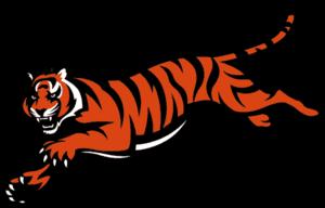 Cincinnati Bengals Transparent PNG PNG Clip art