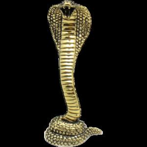 Cobra Snake PNG HD PNG Clip art