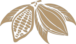 Cocoa Beans PNG Transparent Image PNG Clip art
