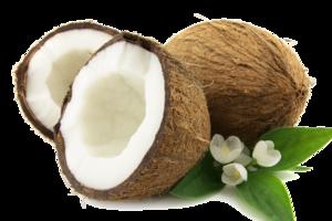 Coconut PNG HD Photo PNG Clip art