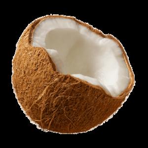Coconut PNG Transparent Images PNG Clip art
