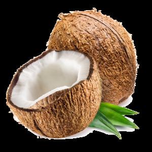 Coconut PNG Transparent Photo PNG Clip art