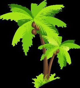 Coconut Tree PNG Clipart PNG Clip art