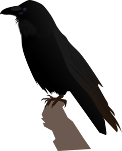 Common Raven Transparent PNG PNG Clip art