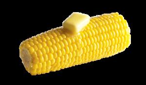 Corn Cob PNG Clip art