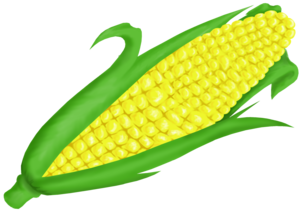 Corn On Cob Clip Art PNG PNG icon