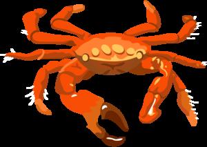 Crab PNG Transparent Image PNG Clip art