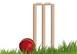 Cricket PNG Background Image PNG Clip art
