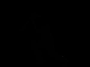 Cricket PNG Free Download PNG Clip art