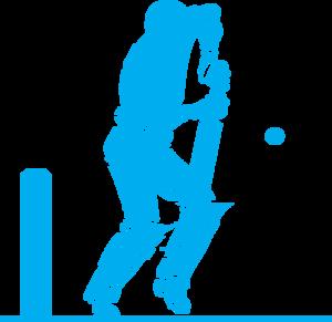 Cricket PNG Image PNG Clip art