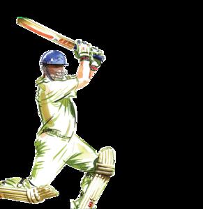 Cricket PNG Photo PNG Clip art