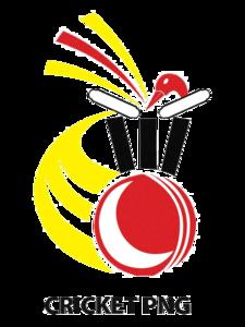 Cricket PNG Transparent Picture PNG Clip art