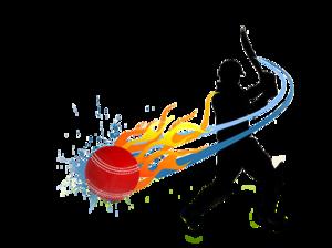Cricket PNG Transparent PNG Clip art