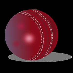 Cricket Transparent Background PNG Clip art