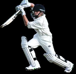 Cricket Transparent Images PNG PNG Clip art
