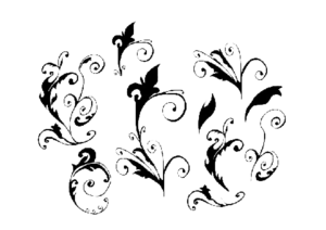 Curly PNG Image PNG Clip art