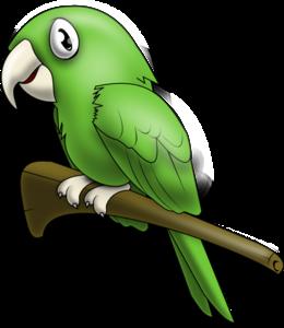 Cute Parrot PNG Pic PNG Clip art