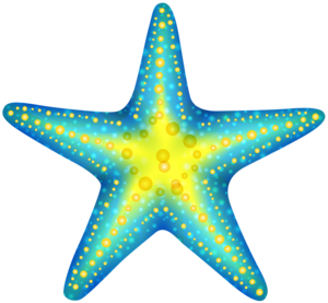 Cute Starfish PNG Photos PNG Clip art
