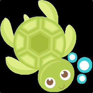 Cute Turtle PNG Transparent PNG Clip art