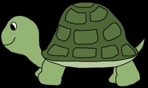 Cute Turtle Transparent PNG PNG Clip art