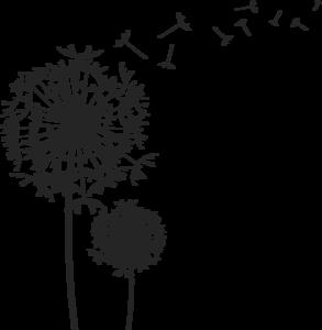 Dandelion PNG Clipart PNG Clip art