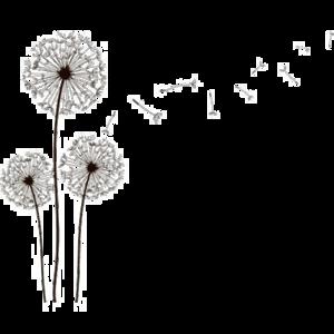 Dandelion PNG File PNG Clip art