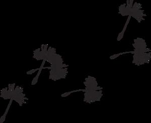 Dandelion PNG Picture PNG Clip art