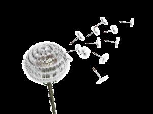 Dandelion Transparent PNG PNG Clip art