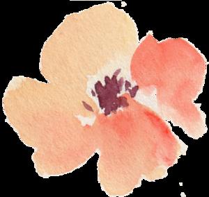 Decorative Leaf Background PNG PNG Clip art