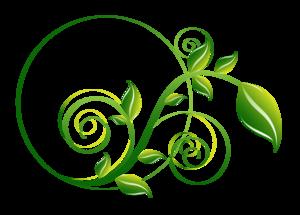Decorative Leaf PNG File PNG Clip art