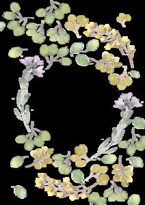 Decorative Leaf PNG Free Download PNG Clip art