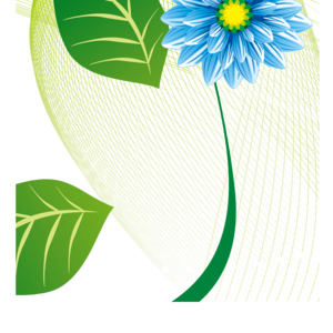 Decorative Leaf PNG Image PNG Clip art
