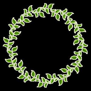 Decorative Leaf PNG Photos PNG Clip art