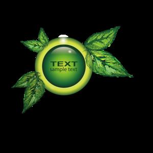 Decorative Leaf PNG Transparent Image PNG Clip art