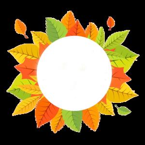Decorative Leaf Transparent PNG PNG Clip art