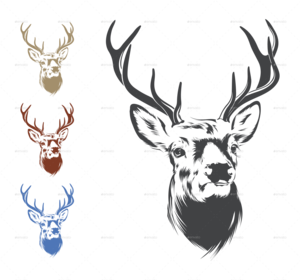 Deer Head PNG Image PNG Clip art
