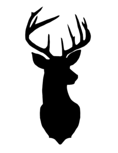 Deer Head PNG Photos PNG Clip art