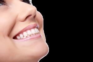 Dentist Smile PNG Image PNG Clip art