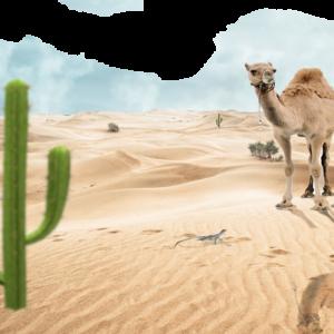 Desert PNG Image Free Download PNG Clip art