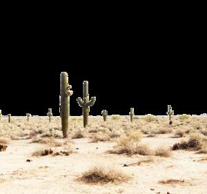 Desert PNG Transparent Image PNG Clip art