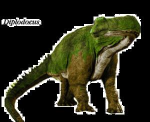 Diplodocus PNG Clipart PNG Clip art