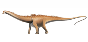 Diplodocus PNG Pic PNG icon
