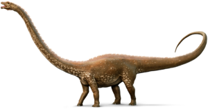 Diplodocus PNG Picture PNG Clip art