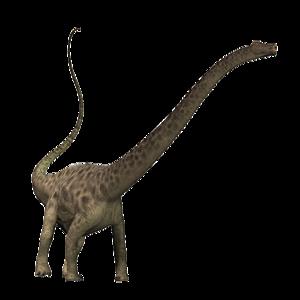 Diplodocus PNG Transparent Image PNG Clip art