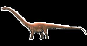 Diplodocus Transparent Background PNG Clip art