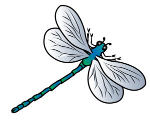 Dragonfly Background PNG PNG Clip art