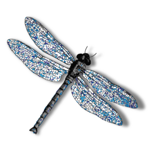 Dragonfly PNG Background Image PNG Clip art