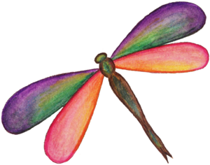 Dragonfly PNG HD PNG Clip art